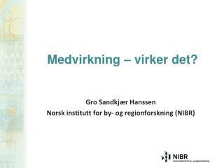 Gro Sandkjær Hanssen Norsk institutt  for by-  og regionforskning  (NIBR)