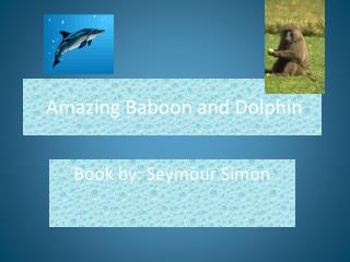 Amazing Baboon and Dolphin