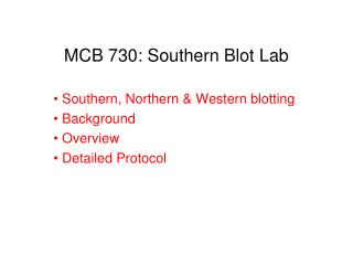 MCB 730: Southern Blot Lab