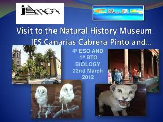 Visit to the  Natural  History Museum  IES Canarias Cabrera Pinto and …