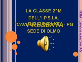 """la classe  2^M dell 'I.P.S.I.A.  """"CAVOUR-MARCONI""""   - PG SEDE  DI  OLMO"""