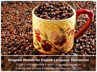 Program Models for English Language Instruction