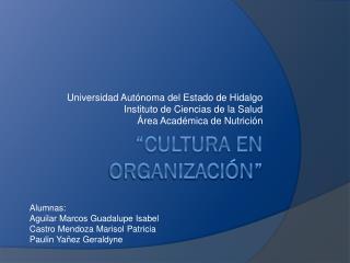 �Cultura en organizaci�n�