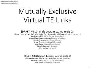 Mutually Exclusive  Virtual TE Links