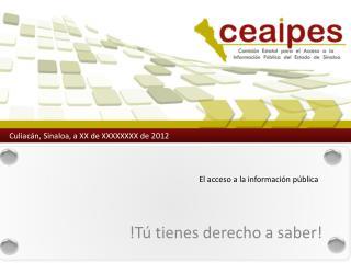 El acceso a la información pública