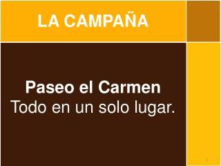 Paseo  el Carmen Todo  en un solo  lugar .