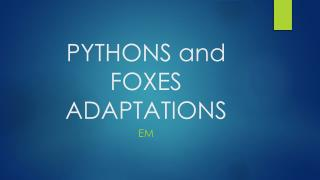 PYTHONS and FOXES ADAPTATIONS