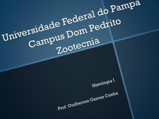 Universidade Federal do Pampa Campus Dom Pedrito Zootecnia