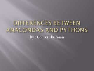 Differences between Anacondas and Pythons