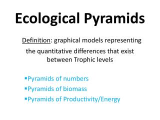 Pyramids of numbers Pyramids of biomass Pyramids of Productivity/Energy