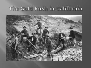 The Gold Rush in  California
