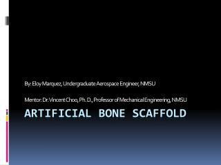 Artificial Bone  ScafFold