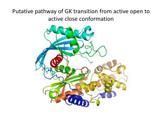 Putative pathway of GK transition from active open to active close conformation