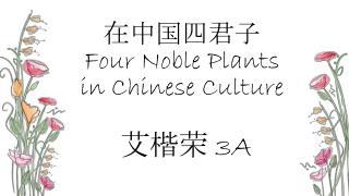 在中国四君子 Four  Noble Plants in Chinese Culture