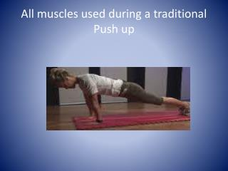 All muscles used during a traditional Push up