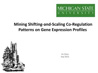 Mining Shifting-and-Scaling Co-Regulation Patterns on Gene Expression Profiles