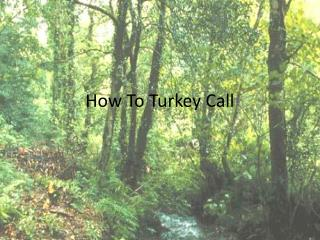 How To Turkey Call