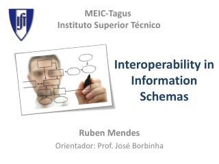 Interoperability in Information Schemas