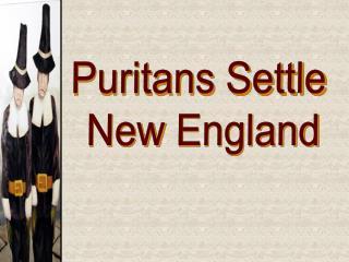 Puritans Settle  New  England