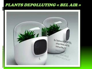 Plants depolluting ��bel AIR��