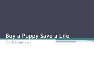 Buy a Puppy Save a Life