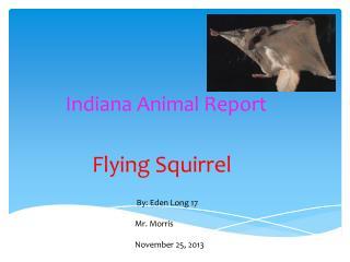 Indiana Animal Report