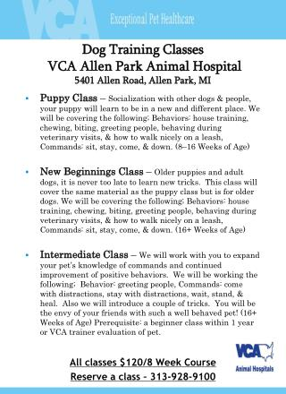 Dog Training Classes  VCA Allen Park Animal Hospital 5401 Allen Road, Allen Park, MI