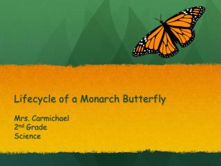 Lifecycle of a Monarch Butterfly