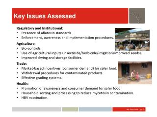 Key Issues Assessed