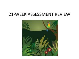 21-WEEK ASSESSMENT REVIEW