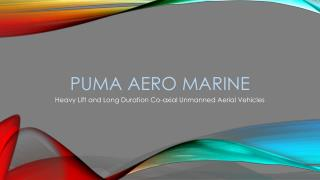 Puma Aero Marine
