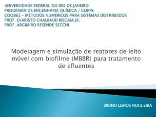 Modelagem e simulação de reatores de leito móvel com biofilme (MBBR) para tratamento de efluentes