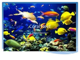 Co ral  Reef