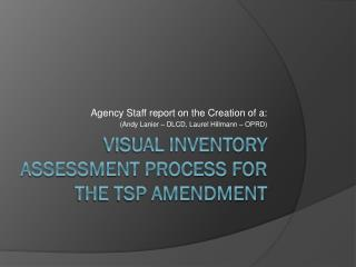 Visual Inventory Assessment Process for the TSP Amendment