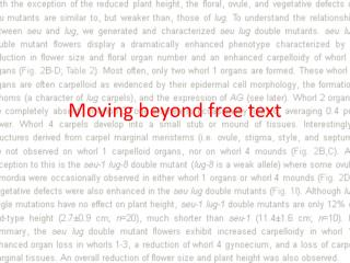 Moving beyond free text