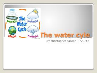 The water  cyle