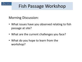 Morning Discussion: What issues have you observed relating to fish passage at site?