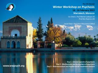The 17th Biennial  Winter Workshop on Psychosis 14 - 16 February 2013  Marrakech, Morocco