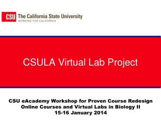 CSULA Virtual Lab Project