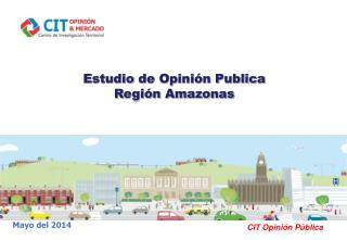 Estudio  de Opinión Publica Región Amazonas