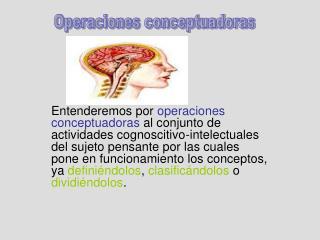 Las  operaciones conceptuadoras  que estudiaremos son la: Definición