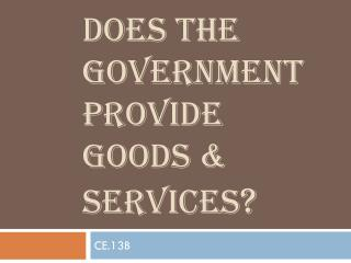 DOES THE Government PROVIDE GOODS & SERVICES ?