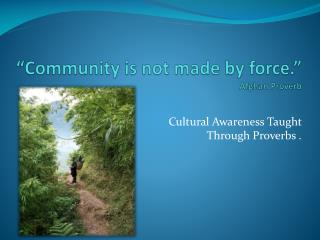 """Community is not made by force."" Afghan Proverb"