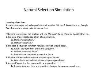 Natural Selection Simulation