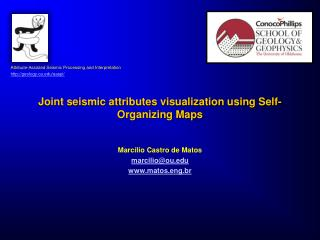 Joint seismic attributes visualization using Self-Organizing Maps