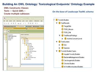 Building An OWL  Ontology :  Toxicological Endpoints' Ontology Example