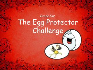 The Egg Protector Challenge