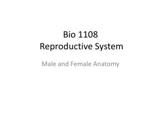 Bio 1108  Reproductive System