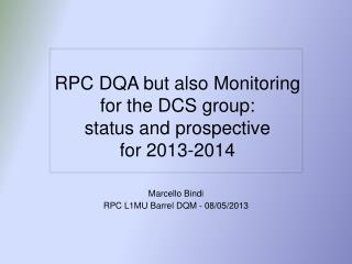 RPC  DQA but also Monitoring  for the DCS group: status  and  prospective  for 2013-2014