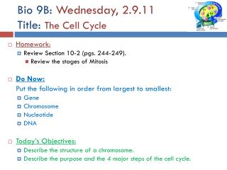 Bio 9B:  Wednesday, 2.9.11 Title:  The Cell Cycle
